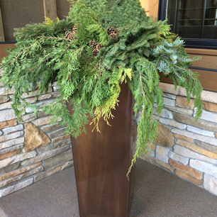 Transitional entry planter